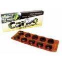 Carbo medicinalis tbl 20(2x10)x300 mg (blis.PVC/Al)