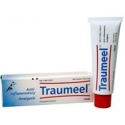 Traumeel S ung 50 g