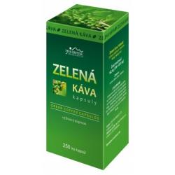 Zelená Káva - 250 ks kapsúl + množstevný rabat