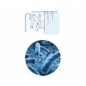 Rozbor vody na Legionella species 89.-Eur